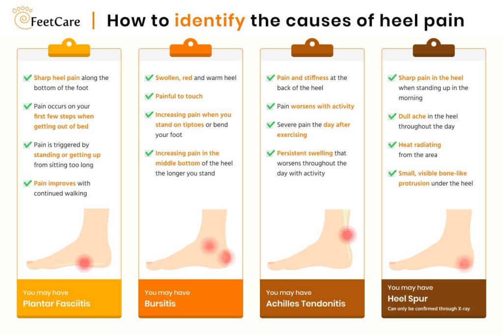 Infographic explaining the symptoms and causes of heel pain